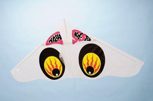 お正月には凧揚げでしょ!懐かしのゲイラカイトが子供にもオススメ!