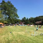 JFAキッズサッカーフェスティバル