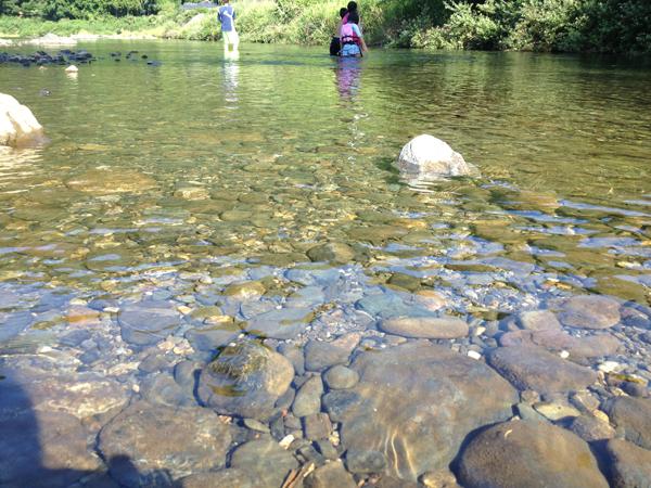 桂川上流のキレイな水
