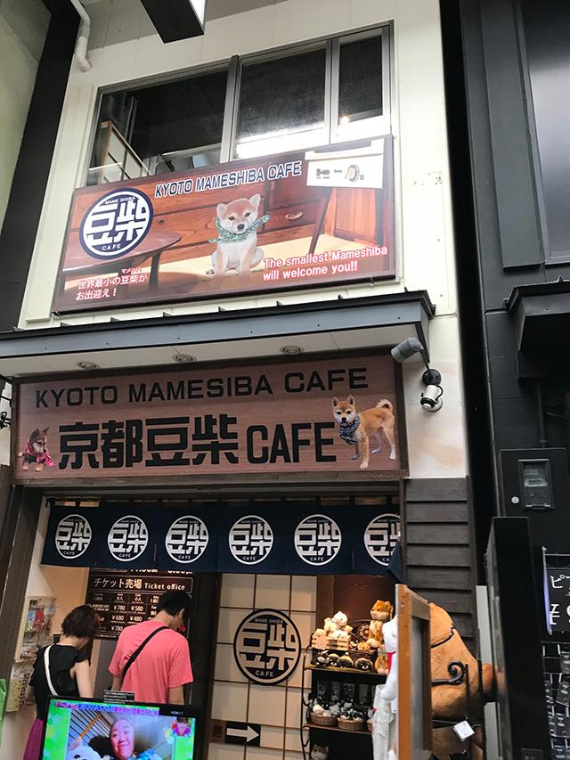京都豆柴カフェ