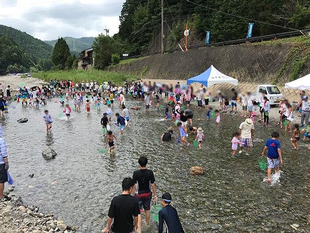 【体験記】子供には思ったよりも難しい!? 清流美山川で鮎のつかみ取りを楽しむ!