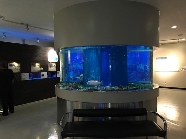 丹後魚っ知館
