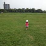 梅小路公園の芝生