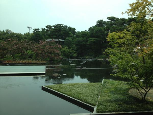 グリーンハウスコラボから見える風景