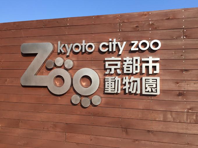 動物の見せ方が素晴らしい!リュニューアル&グランドオープンした京都市動物園に行って来た感想