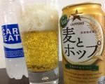 お酒の味は健康のバロメーター!11日ぶりにビールを飲んでみた