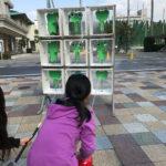 防災を学びながらおもちゃリサイクル!子供向け防災イベント「イザ!カエルキャラバン!」に行ってきた