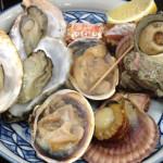 【伊勢志摩旅行記 3】鳥羽といえば牡蠣!子連れで牡蠣を食すなら「海の食堂はっかい」がオススメ!