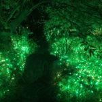 夜の公園を彩るあかりの演出と夏の夜空のレストラン!子供たちと京の七夕 梅小路公園会場に行って来たよ!